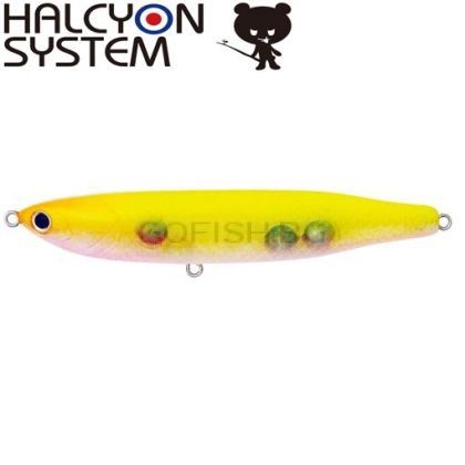 Halcyon System INASE NM-3